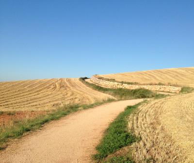 Etapa del Camino Francés Estella - Los Arcos