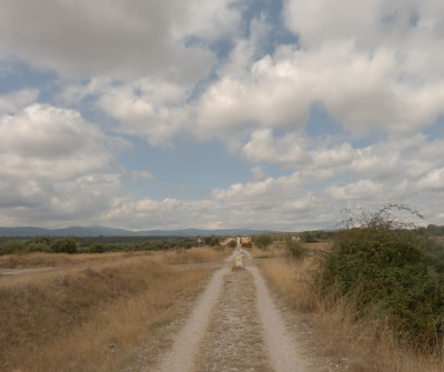 Camino Francés entre León y San Martín del Camino
