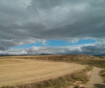 Camino Francés entre  Los Arcos y Logroño