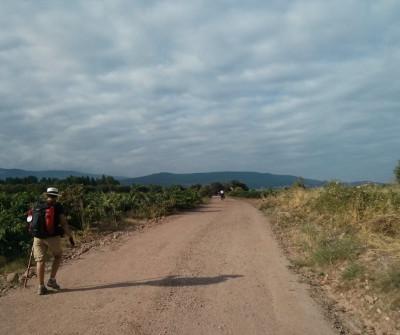 Peregrino a su paso por Torres del Río, en el Camino Francés