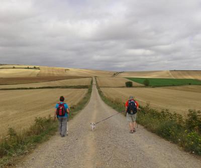Peregrinos por el Camino Francés entre Nájera y Santo Domingo de la Calzada