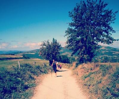 Etapa O Cebreiro - Triacastela, en el Camino Francés