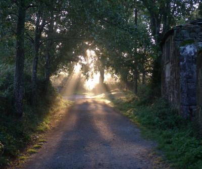 Etapa Sarria - Portomarín del Camino Francés