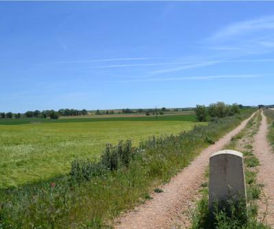 Señalización en el Camino Francés rumbo a El Burgo Ranero
