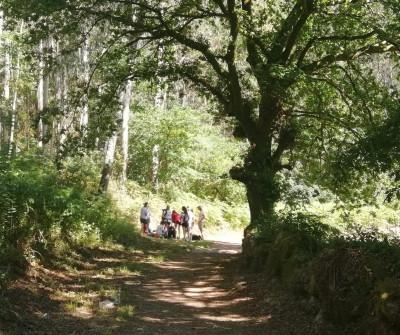 Canicova, parte del Camino Portugués