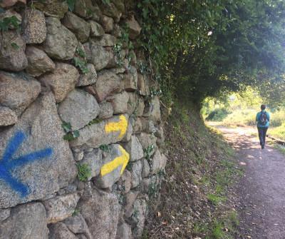 Flechas amarillas en Tui marcan el Camino Portugués