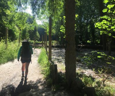 El Camino Portugués en su paso por el Río Louro