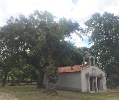 Capilla de Santiaguio de Antas en Mos, Camino Portugués