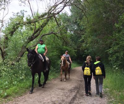 Peregrinos haciendo el Camino Portugués a caballo