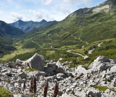 Paisaje del Camino Primitivo entre Salas y Tineo