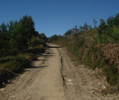 Camino Primitivo entre A Fonsagrada y O Cádavo