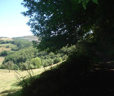 Salida de Lugo por el Camino Primitivo