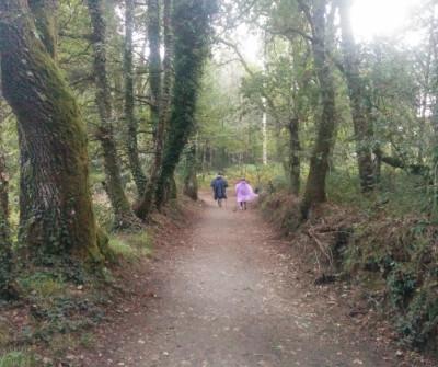 Camino Primitivo a su paso por Arzúa