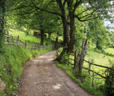 Caminando de Tineo a Pola de Allande por el Camino Primitivo