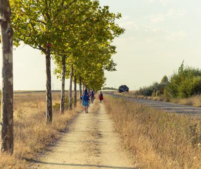 Peregrino en el Camino Sanabrés
