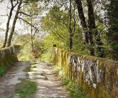 Camino Sanabrés a su paso por Cudeiro