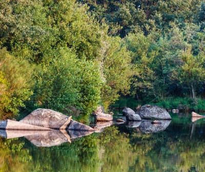 Río Tera en el Camino Sanabrés