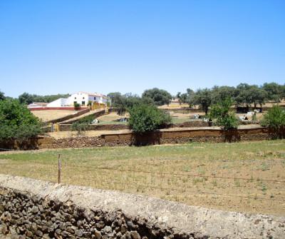 Pueblo Real de Jara