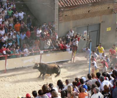 Toros en Benavente