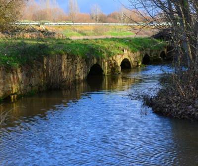 Puente romano en Palacios