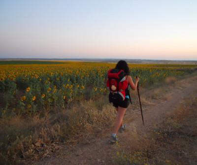Peregrina camino a Salamanca