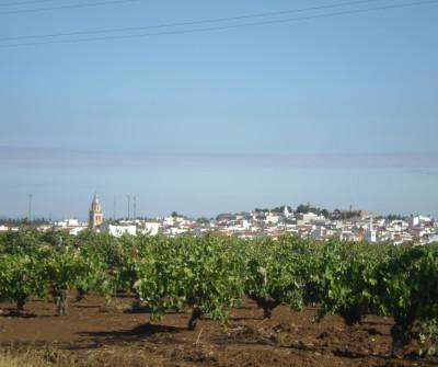 Pueblo de Villafranca de los Barros