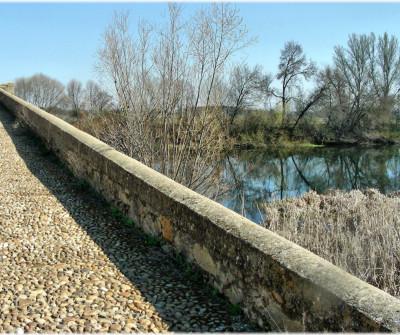 Puente de Vizana