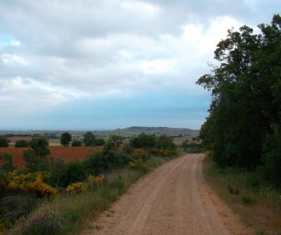 Camino hacia Zamora