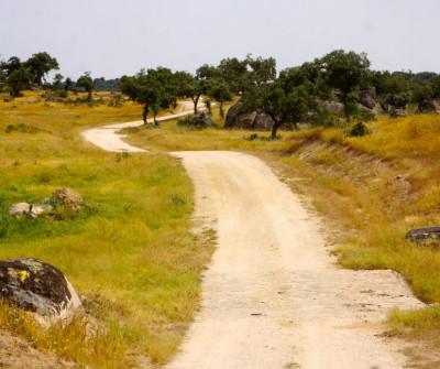 Camino a Mérida